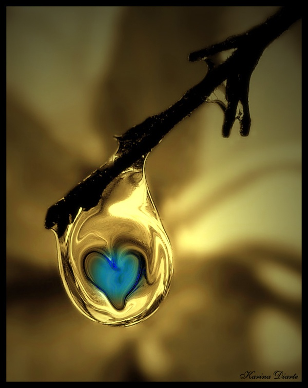 A Drop of Love ♥