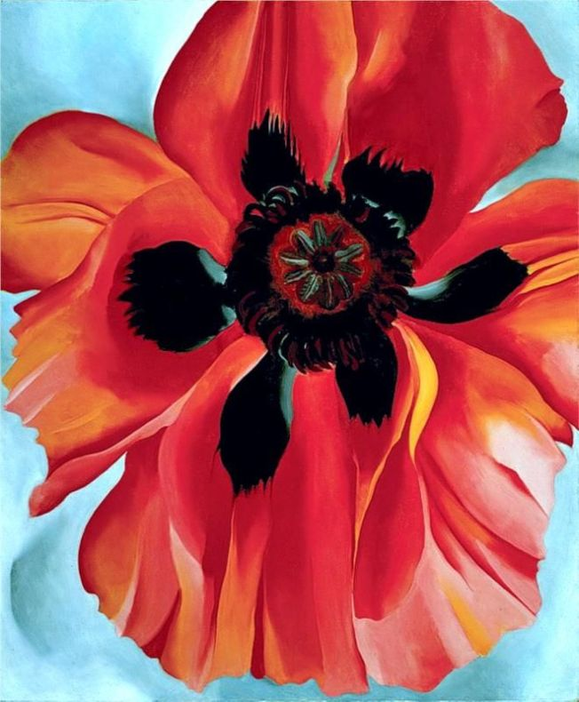 Red Poppy VI by Georgia O'Keeffe