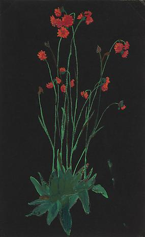 Bishop_Red_Flowers_on_Back_nd_gouache0